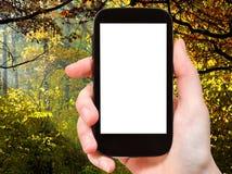 Smartphone z cięcia out jesieni i ekranu drewnami Fotografia Royalty Free