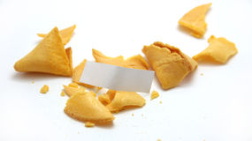 Smashed Blank Fortune Cookie. On white stock photo