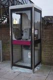 Smashed Broken Phone Box in Wokingham Stock Images