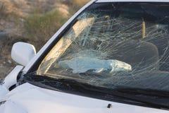 Smashed Car Windshield. Closeup of a smashed car windshield on desert highway Stock Image