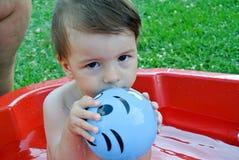 Smaskig boll Fotografering för Bildbyråer