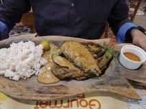Smaskig organisk fisk, aubergine och ris royaltyfri bild