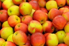 Smaskig stapel av äpplen Arkivfoton