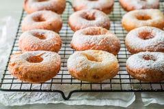 Smaskiga och hemlagade hemlagade donuts med pudrat socker Arkivbilder