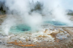 Smasmodic geyser in Yellowstone National Park, USA Stock Image