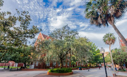 Smathers Library at the University of Florida Stock Images
