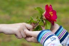Símbolo da amizade e do amor Fotografia de Stock