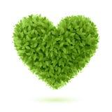 Símbolo do coração nas folhas verdes Fotografia de Stock Royalty Free