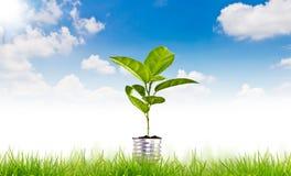 Símbolo verde de la energía sobre el cielo azul Fotos de archivo libres de regalías