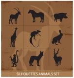 Símbolos abstratos da silhueta dos animais Imagens de Stock