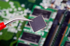 SMD Computer Chip is kept with a pair of tweezers. A computer chip in SMD Design is kept on a Circuit board with a pair of tweezers Stock Photos