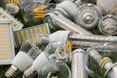 SMD and filaments of ecological and economical LED bulbs. Big family of ecological and economical LED bulbs of E27, R7s and G4 types on the green grass Stock Photography