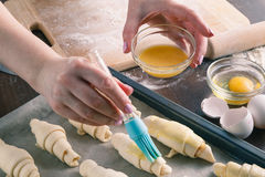 Smearing raw croissants. With brush in yolk, preparation process Royalty Free Stock Images