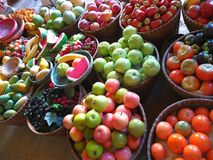 Smedjafrukt fotografering för bildbyråer