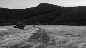 Smedovets i svartvitt Royaltyfri Fotografi
