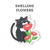 Smeling fiorisce il gatto illustrazione di stock