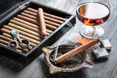 Smell of brandy and smoking a cigar Royalty Free Stock Photography