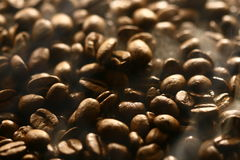 Smell of coffee beans Stock Photo