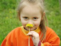 Smell the Flower. Smelling the flower Royalty Free Stock Image