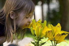Smell Flowers Royalty Free Stock Photography