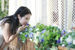Smell the Flowers Royalty Free Stock Photography