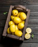 The smell of fresh lemons in wooden box. On black wooden background royalty free stock photo