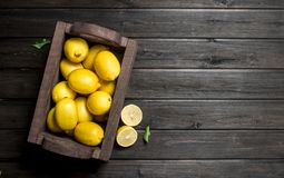 The smell of fresh lemons in wooden box. On black wooden background stock photos