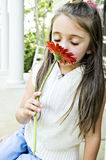 Smell My Red Flower. Littel Girl smelling her red gerber daisy with a dreamy look on her face Royalty Free Stock Image