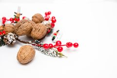 The smell of the new year, walnuts and Christmas decoration. Christmas twig Royalty Free Stock Images
