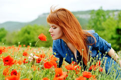 Smell of poppy Stock Photography