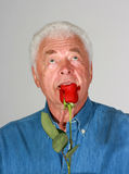 Smell of the rose. Handsome mature man holding a red rose stock image