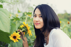 Smell the Sunflower Royalty Free Stock Images