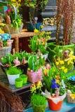 smellcomp магазина иллюстрации цветка Стоковое Изображение