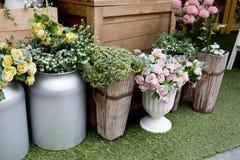 smellcomp магазина иллюстрации цветка Стоковые Изображения