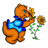 Smelling bear. A cute bear smelling a yellow flower Royalty Free Stock Image