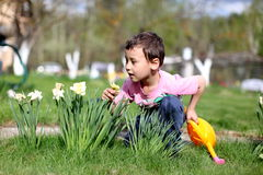 Smelling boy a  flowers Royalty Free Stock Photo
