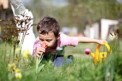 Smelling boy a  flowers Stock Photos