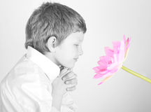 Smelling flower Stock Image