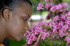 Smelling Flowers Stock Photos