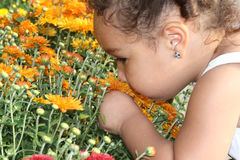 Smelling flowers. A toddler girl taking time to smell the flowers Royalty Free Stock Photo