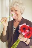 Smelling Flowers Brightens Up my Day Royalty Free Stock Images