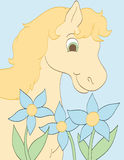 Smelling the Flowers. Happy horse smelling pretty blue flowers Stock Photos