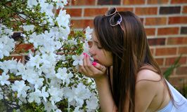 Smelling the flowers Stock Image