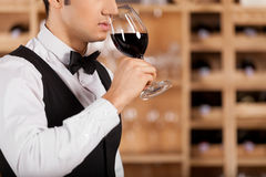 Smelling a good wine. Cropped image of confident young sommelier standing in front of shelf with wine bottles and keeping arms crossed Royalty Free Stock Image
