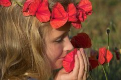 Smelling the poppies. Girl in the field of poppies Royalty Free Stock Photo