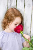 Smelling a Rose Royalty Free Stock Image
