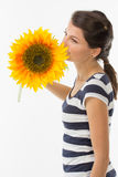 Smelling sunflower Stock Images
