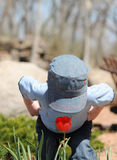 Smelling Tulip. A young boy wearing a cap trying to smell a red tulip on a sunny day Royalty Free Stock Image