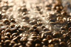 Smells of coffee beans Royalty Free Stock Images