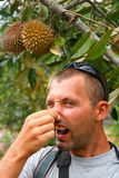 Smelly Durian. Man trying to block the nose to avoid durian smell royalty free stock photos